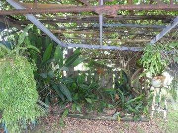 shade house