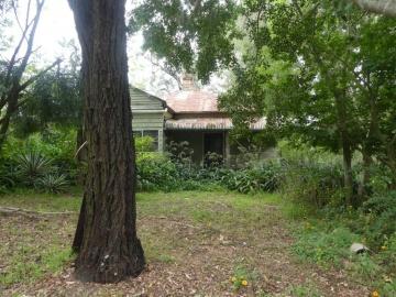 original homestead 2