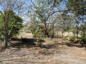 front garden 3